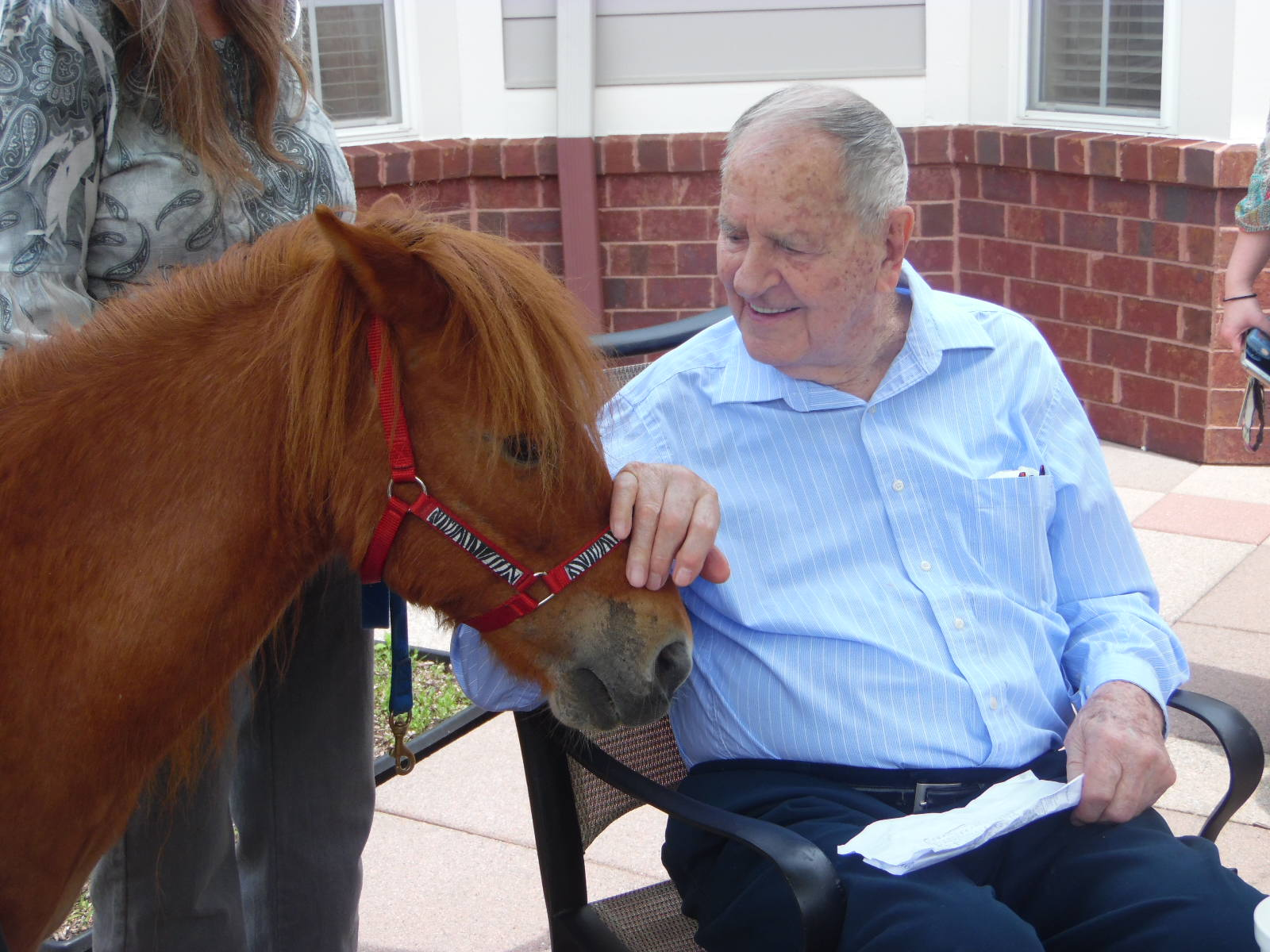 Kentucky Derby Activity with a pony for animal-assisted therapy