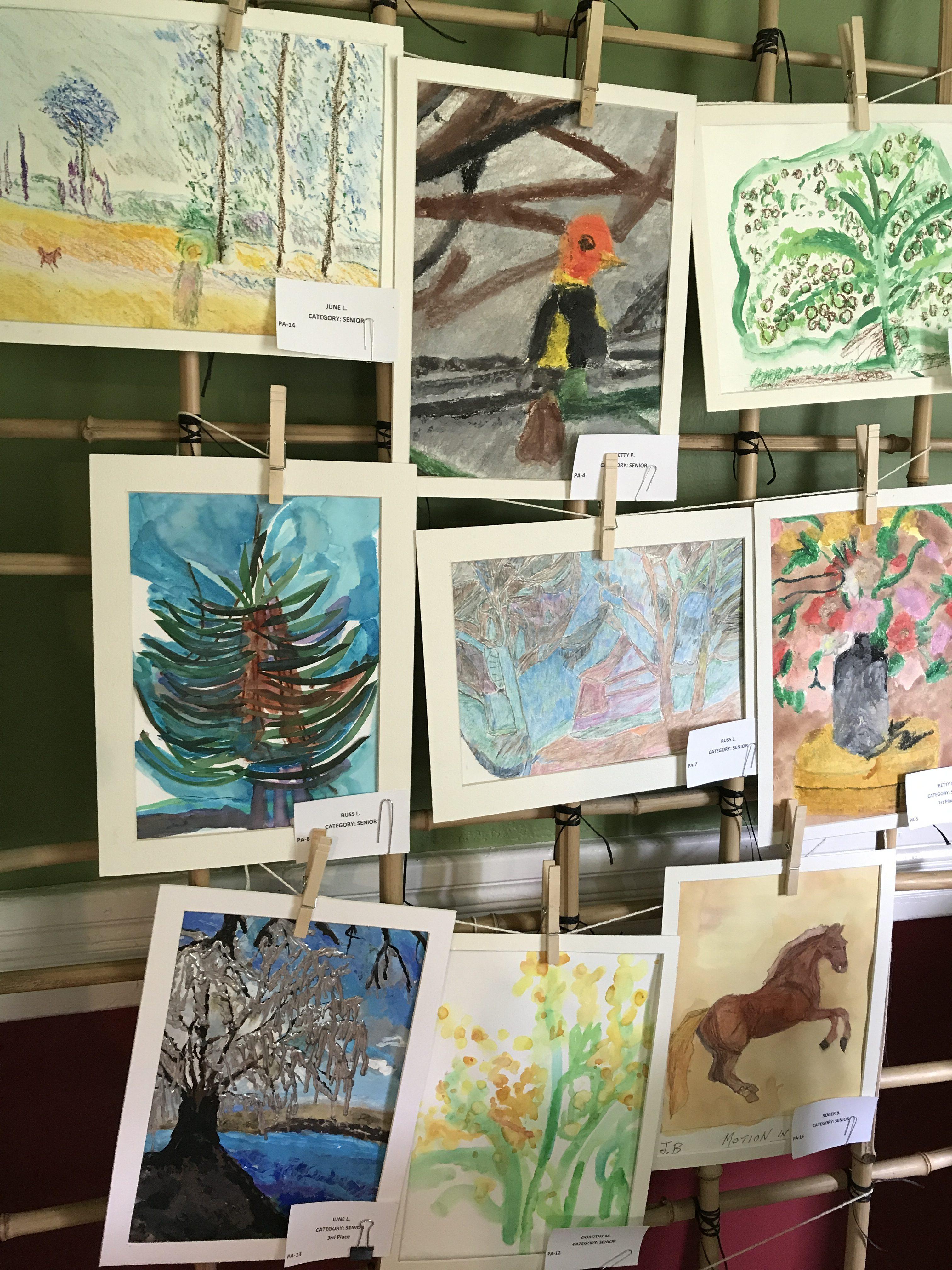 senior division entries in the Arbor Day Art contest