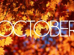 See What's Happening in October at Parc Provence