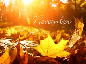 See What's Happening in November at Parc Provence