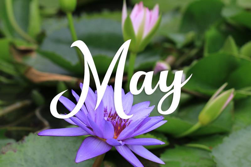 Parc Provence May 2019 Activities Calendar