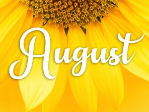See What's Happening in August at Parc Provence