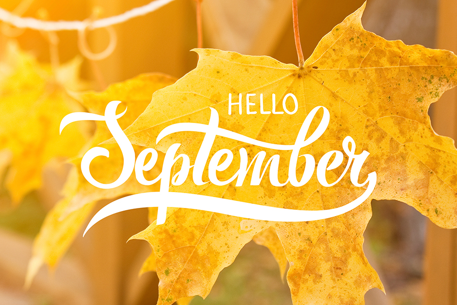 """Hello September"" Graphic"