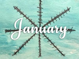 See What's Happening in January at Parc Provence