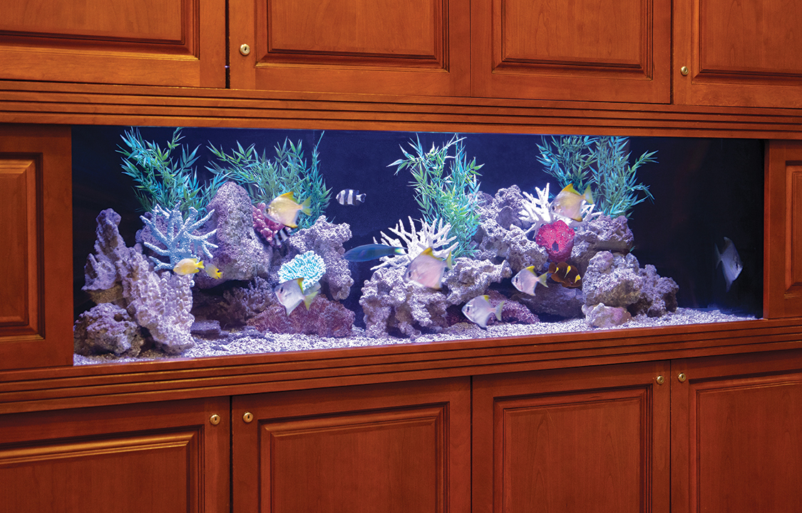 Parc Provence Memory Care Skilled Nursing Community Aquarium